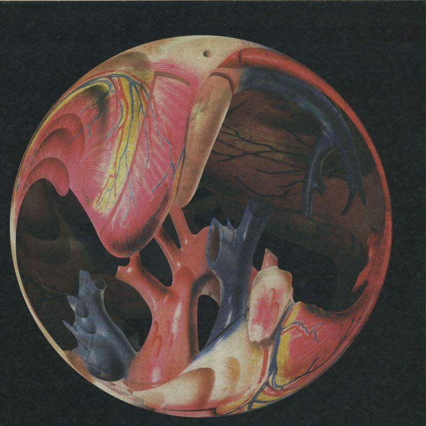 198706